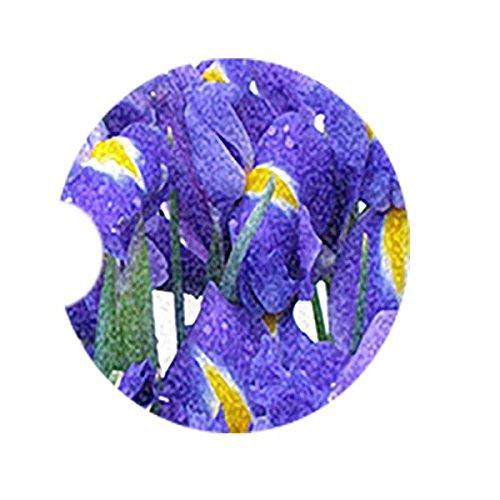 Iris Coaster - 8