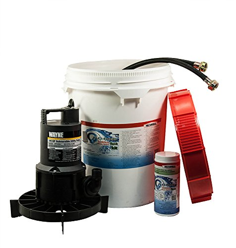 Clean Tankless Water Heater (Rectorseal 68711 Calci-Free Tankless Water Heater Flush Kit)