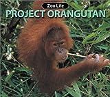 Project Orangutan, Susan Ring, 1590360583