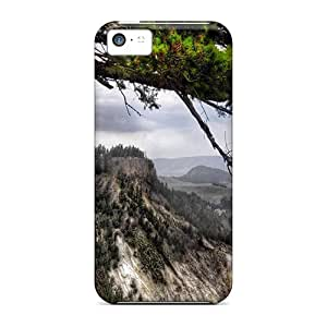 YDj38513TkYr Anti-scratch Cases Covers Oilpaintingcase88 Protective Valley Overlook Cases For Iphone 5c