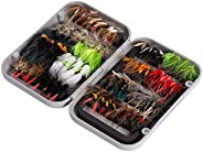 BASSDASH Fly Fishing Flies Kit Fly Assortment Trout Bass Fishing with Fly Box, 36/64/72/76/80/96pcs with Dry/W