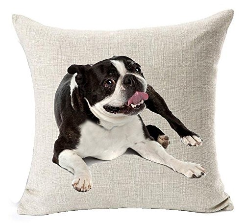 - Acelive 18 x 18 Inches Cotton Linen Cute Funny Various Pet Dogs Human Friends Adorable Boston Terrier Tummy Throw Pillow Covers Cushion Cover Decorative Sofa Bedroom Living Room Square