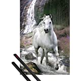 Poster + Hanger: Horses Poster (36x24 inches) Gracefulness, White Stallion And Waterfall, By Bob Langrish And 1 Set Of Black 1art1® Poster Hangers