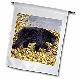 VWPics Animals - Black Bear.(Ursus americanus).Vancouver Island,British Columbia,Canada - 18 x 27 inch Garden Flag (fl_45618_2)