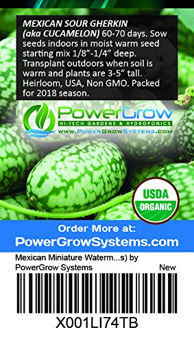 Mexican Miniature Watermelon Seeds ► Organic 'Cucamelon' Mini Sour Gherkin Seeds (15+ Seeds) ◄ by PowerGrow Systems