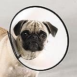"Dog Elizabethan Collar X-Small 8"" For Fast Healing"