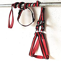 Quno Nylon Non Pull Dog Pet Leash Training Harness and Adjustable Lead with Collar Set Red and Black Large