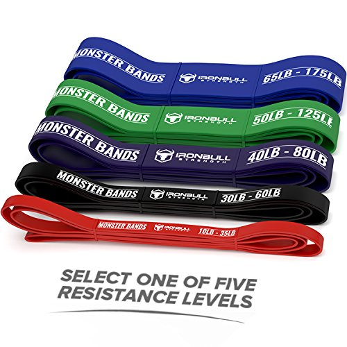 Pull Assist Premium Resistance Bands