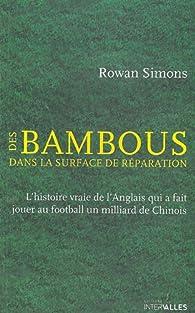 Des bambous dans la surface de réparation par Rowan Simons