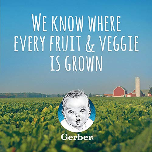 51JRqIMh %2BL - Gerber Purees 2nd Foods Veggie & Fruit Variety Pack, 8 Ounces, Box Of 16 (Packaging May Vary)