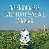 Gerber Purees Strawberry Banana Yogurt Toddler