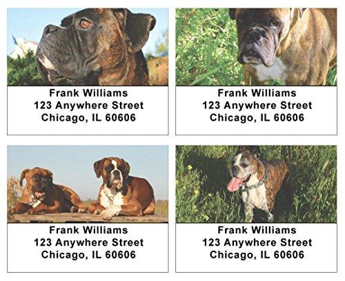 Boxers Address Labels