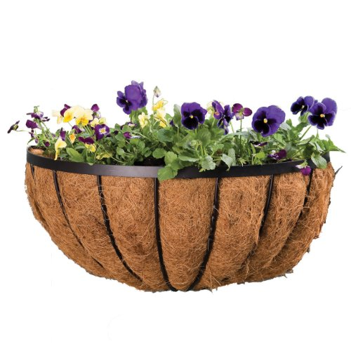 (Panacea 88542 Cotswold Series Wall Planter, Black, 22-Inch)