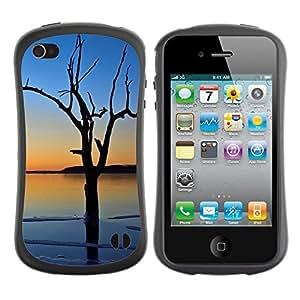 Paccase / Suave TPU GEL Caso Carcasa de Protección Funda para - Sunset Tree Beautiful Nature 3 - Apple Iphone 4 / 4S