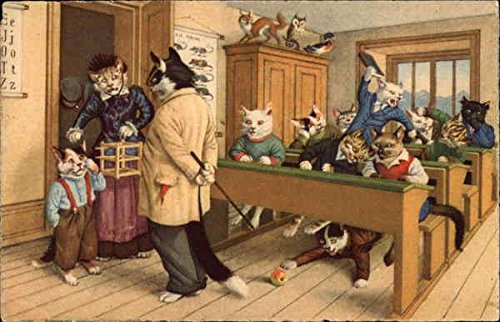 Cats Dressed like People in a Schoolroom Original Vintage Postcard from CardCow Vintage Postcards