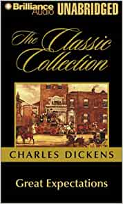 the use of irony in great expectations a novel by charles dickens Great expectations, by charles dickens, is a novel that deals with the formative  years and spiritual education of the main character, pip.