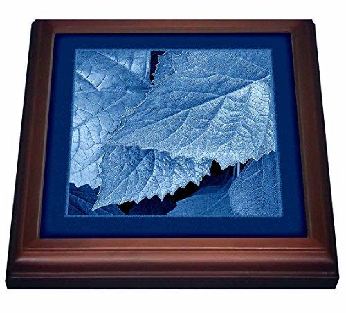 3dRose trv_33455_1 Cobalt blue metallic leaves with royal blue frame Trivet with Ceramic Tile, 8