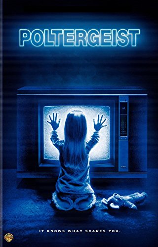 POLTERGEIST Movie Poster Horror Paranormal Activity Speilberg Hooper Ghosts 24X36INCH by Da Bang