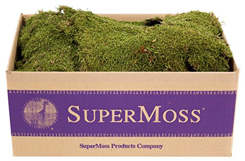 SuperMoss (21588) Sheet Moss Dried, Natural, 5lbs (20-24 sq. ft.)