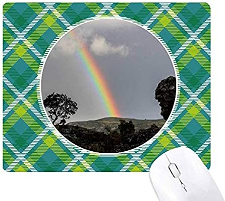 Rainbow Forestry Science Nature Scenery Green Lattices Grid