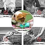 QQPETS Dog Water Bottle Leak Proof Portable