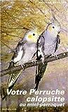 Votre perruche calopsitte ou mini-perroquet