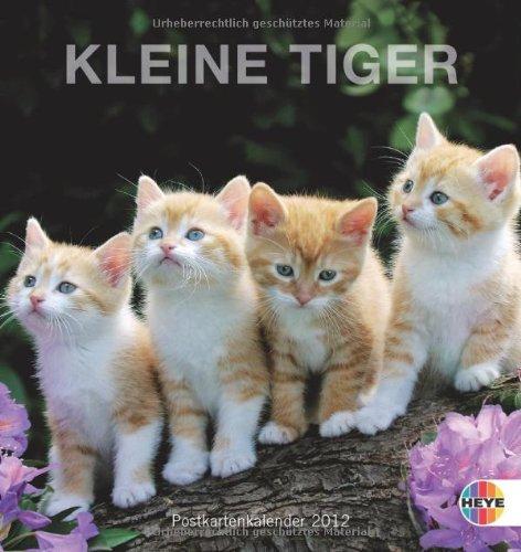 Kleine Tiger 2012. Postkartenkalender