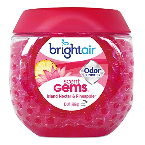 BRIGHT Air 900229CT Scent Gems Odor Eliminator, Island Nectar and Pineapple, Pink, 10 oz (Case of (Bright Gem)