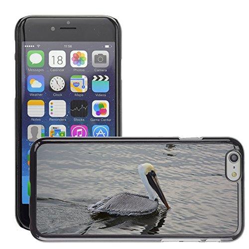 """Just Phone Cases Hard plastica indietro Case Custodie Cover pelle protettiva Per // M00127848 Pelikan Oiseau animal sauvagine // Apple iPhone 6 PLUS 5.5"""""""