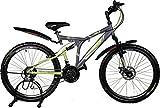 Kross K 40 21 Speed Disc 26 Grey&Green 402232 Mountain Cycle (Grey)