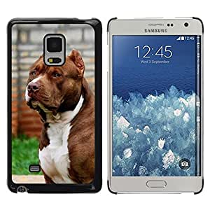 LOVE FOR Samsung Galaxy Mega 5.8 Pit-Bull American Dog Boston Terrier Canine Personalized Design Custom DIY Case Cover