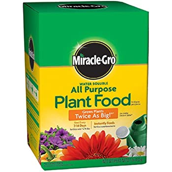 Miracle-Gro 160101 Water-Soluble All Purpose Plant Food, 24-8-16, 1-Pound