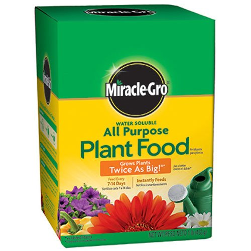 Miracle-Gro 160101 Water-Soluble All Purpose Plant Food, 24-8-16, 1-Pound (Miracle Gro Water Soluble Lawn Food)