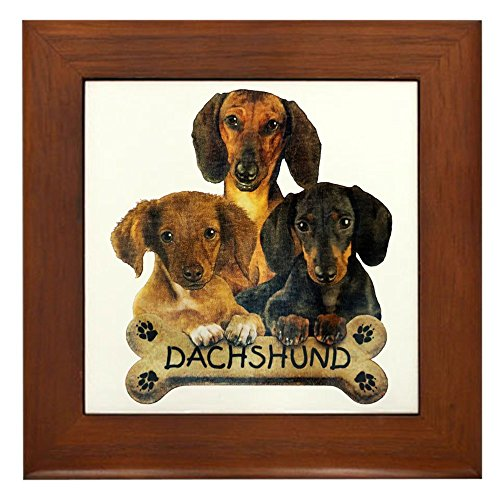 (Framed Tile Dachshund Trio with Bone Name Plate)
