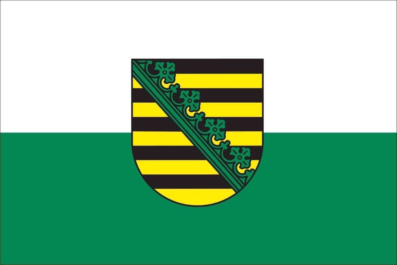 Bandera de Sajonia con Escudo, ca. 150 cm x 250 cm: Amazon.es: Jardín