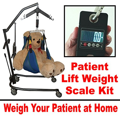 Patient Lift Scale