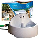 Image of PetSafe Drinkwell Everflow Indoor/Outdoor Dog and Cat Water Fountain, Pet Drinking Fountain, 192 oz. Water Capacity