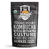 Fermentaholics Organic Kombucha SCOBY with Twelve Ounces of Starter Tea - Live Starter Culture - Makes A One Gallon Batch - 1.5 Cups of Strong Mature Starter Tea - Brew Your Own Kombucha