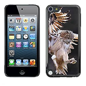 PC/Aluminum Funda Carcasa protectora para Apple iPod Touch 5 owl hunt flight predator nature animal / JUSTGO PHONE PROTECTOR