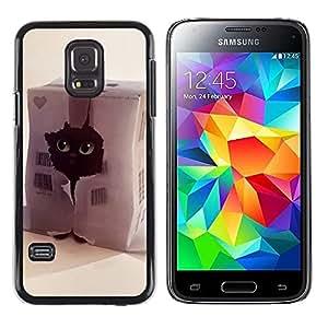 iKiki Tech / Estuche rígido - Funny Cute Cat - Samsung Galaxy S5 Mini, SM-G800, NOT S5 REGULAR!