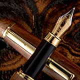 Fountain Pen Set Fine Nib Medium Point Case Converter Vintage Antique Drawing Writing Journal Calligraphy Refill Pens For Disposable Refillable Ink Cartridges Bottles of Gift Women Kids Men On Sale