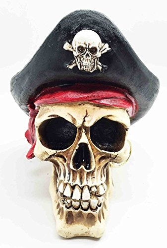 Figurine Buccaneer Treasure Pirate Head Skull with Hat Skeleton Halloween Decor ()