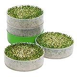 Kitchen Crop VKP1234 Deluxe 4-Tray Bonus Pack Seed