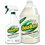 OdoBan Ready-to-Use 32 oz Spray Bottle & 1 Gal Concentrate, Eucalyptus Scent - Odor Eliminator, Disinfectant, Flood Fire Water Damage Restoration