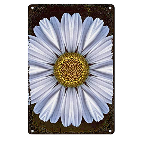 (SOUWO Metal Poster Tin Sign Plate White Daisy Flower for Home Bathroom and Cafe Bar Pub, Wall Decor)