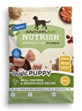 Rachael Ray Nutrish Bright Puppy Natural Dry Dog F...