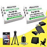 Two Halcyon 2350 mAH Lithium Ion Replacement NP-95 Battery + Memory Card Wallet + SDHC Card USB Reader + Deluxe Starter Kit for Fujifilm X100S, X100, X-S1, FinePix Real 3D W1 Digital Cameras and Fujifilm NP-95