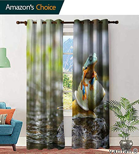 LQQBSTORAGE Custom Pattern Window Treatments Curtains Valance Flying Frog Tree Frog Frog on Snail Frogs Frog on Snail, Curtains Kids, W72 x L96 Inch, (2 Panels)