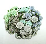 GRC[TM] 60 Mix Color 20 mm Artificial Mulberry Paper Rose Flower Wedding Scrapbooking Card Diy Craft Handmade Valentines Anniversary Embellishment