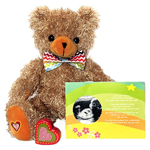 (My Baby's Heartbeat Bear - The Rainbow Baby Recordable Stuffed Animal Kit Includes 13